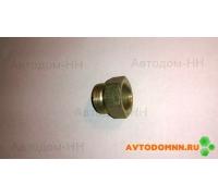 Штуцер тормозной системы (большой) ПАЗ 3205-3509152