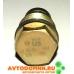 Клапан редукционный сброса давления топливной рампы дв. Cummins ISF 2.8, 3.8 (в/з 5317174) 3974093