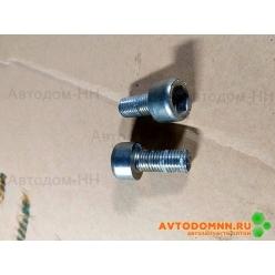 Болт крепления тормозного диска ПАЗ Вектор Next 45 3114 9086